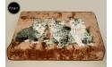Koc Elway 160x210 - zielone koty na brązie 674-1
