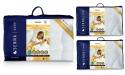 INGEO SET INTER-WIDEX Duvet 220x200 + 2x Pillow 50x70 -